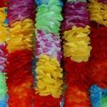 ハワイ フラ イメージ