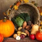 野菜 かぼちゃ