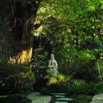仏像 お寺 神社 仏閣