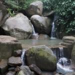 風景 自然