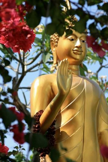 201101thai33