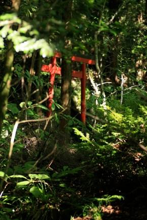 Sur le chemin qui nous mène au Tosho-gu