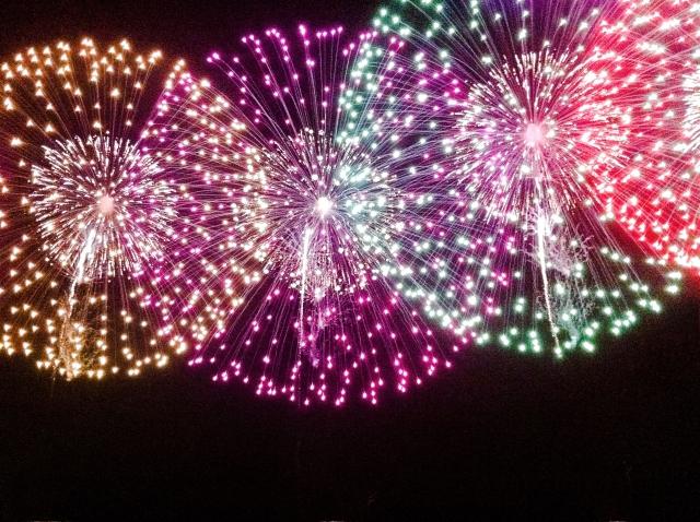 隅田川花火大会を汐入公園で見る!場所取りのコツと混雑状況は?