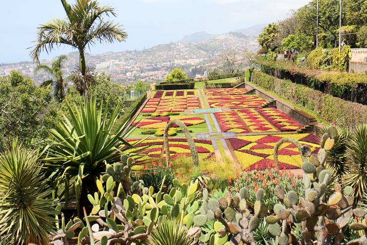 マデイラ植物園の幾何学模様ガーデン