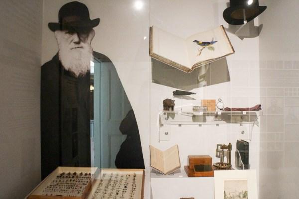 ダーウィンの家