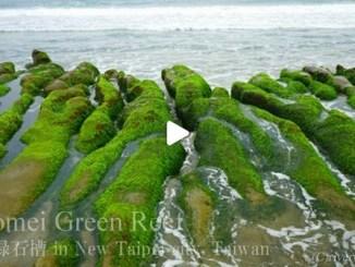 【TOP BUZZ】【絶景大陸vol.082】一面緑のふしぎな海岸!台湾新北市の老梅緑石槽