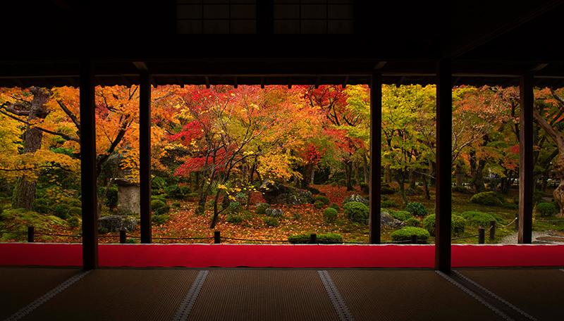 圓光寺 京都