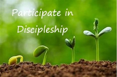 Blog - Participate in Discipleship