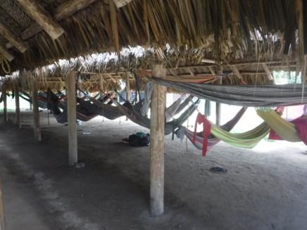 Main hammock area