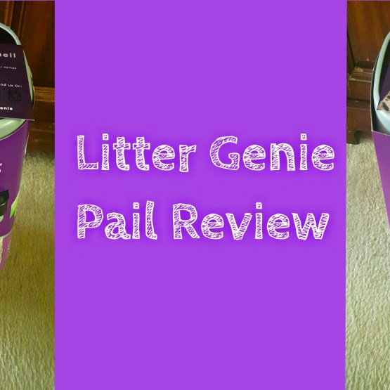 Litter Genie Pail Review