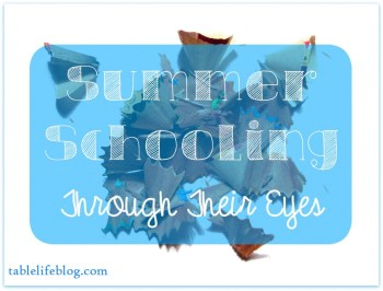 Summer School - Summer Homeschool Through Their Eyes