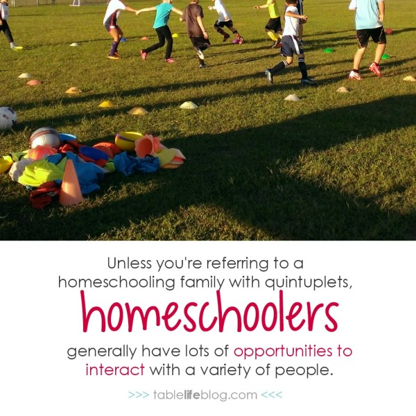 What a New Homeschooler Doesn't Need to Hear from You