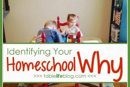 Homeschool Mother's Journal: Identifying Your Homeschool Why