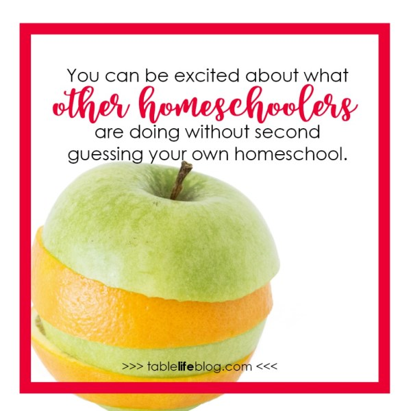 Saying Goodbye to Homeschool Comparison and Loving the Homeschool You Have