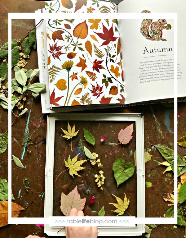 Beautiful DIY Nature Art Inspired by Children's Books