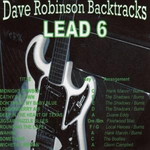 Dave Robinson - Lead 6