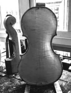 Tecchler violin maple flamed back