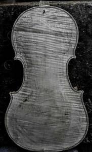 Gagliano violin back