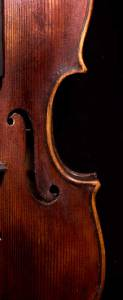 Stainer violin f hole