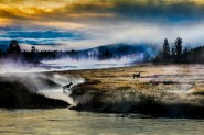 Yellowstone-3
