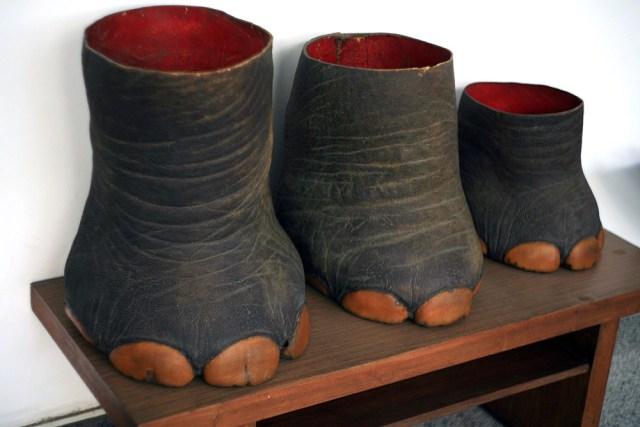 Những chiếc chân voi Tây Nguyên đã được thuộc da để dùng làm vật trang trí.