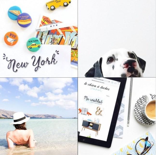 instagram tache de rousseur anneeeck chien taches