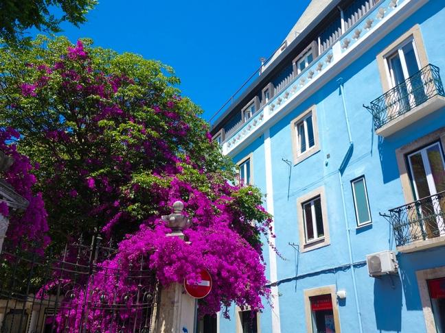 Blog Tache de Rousseur - Lisbonne juin 2015-133
