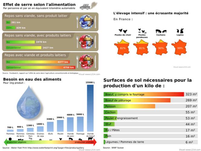 Chroniques d'une vegetarienne - Pourquoi devenir vegan effets négatifs de l'élevage sur l'environnement