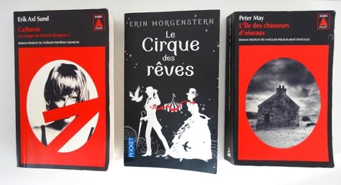 Mes lectures 3 - Les Visages de Victoria Bergman #3(Catharsis), Le Cirque des Reves, L'ile de Lewis (2)