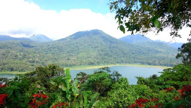Voyage 1 mois en Indonésie - Bali Nord : Munduk