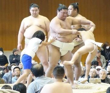 girl-sumo