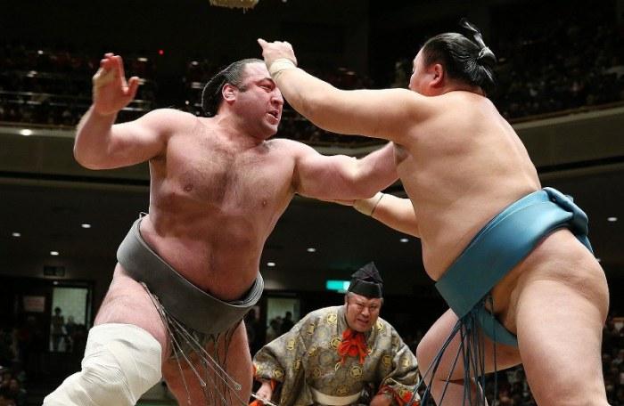 Tochinoshin Hatsu Day 12