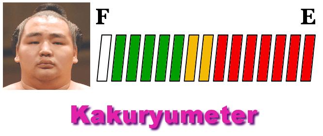 kakuryu-meter-hatsu-2018-day11