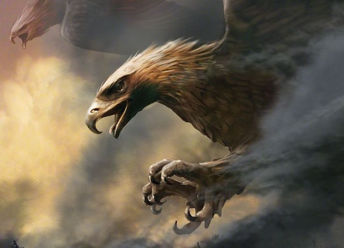 the-eagles-are-coming