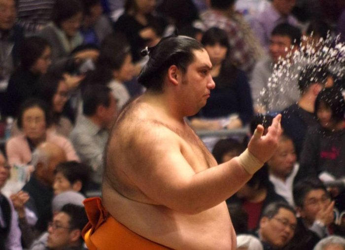 Kaisei Salt