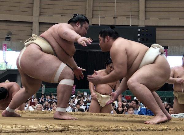 yutakayama-butsukari-endo