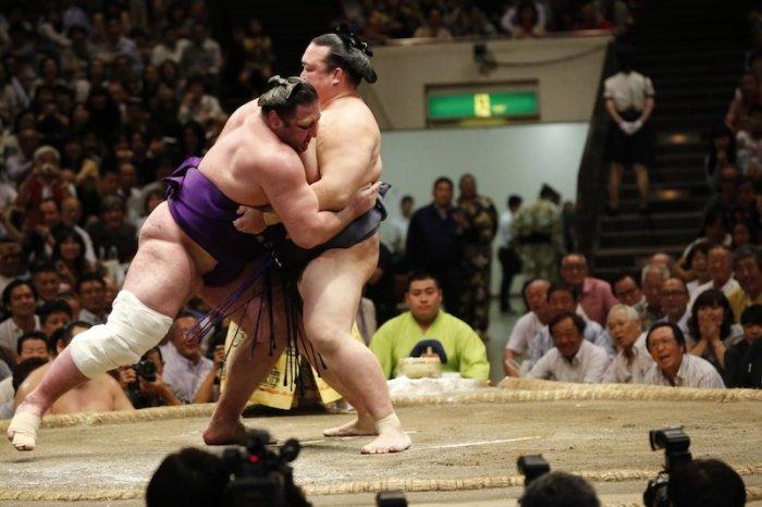 Kisenosato - Tochinoshin Day 9