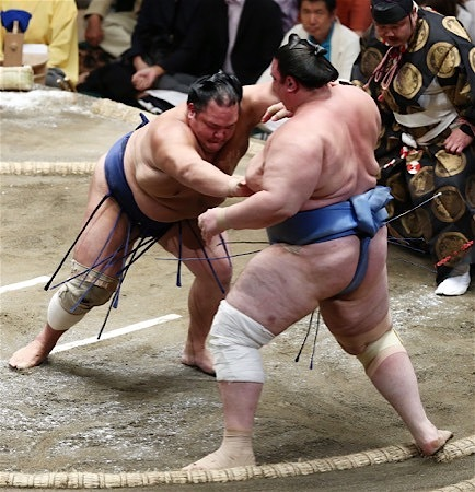 aoiyama-hokutofuji