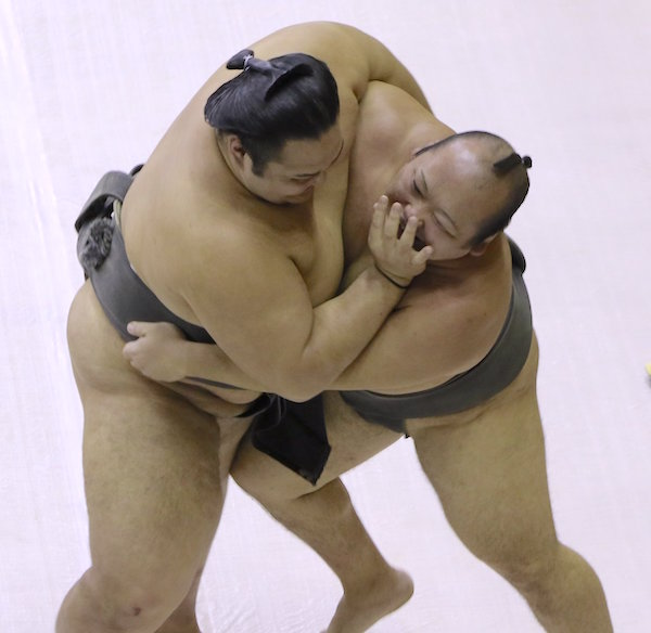 gokushindo-arikawa