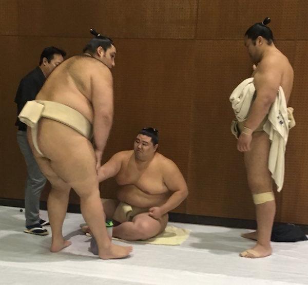 kaisei-hazes-shodai