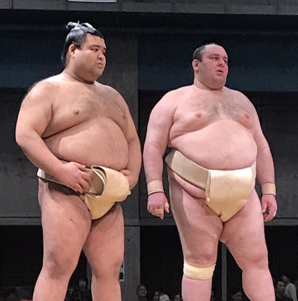 takayasu-practices