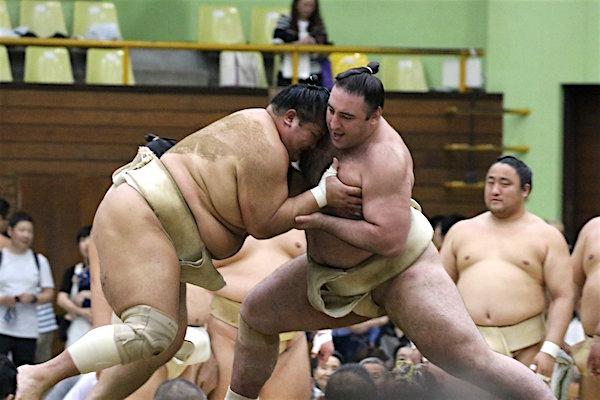 tochinoshin-butsukari-hokutofuji
