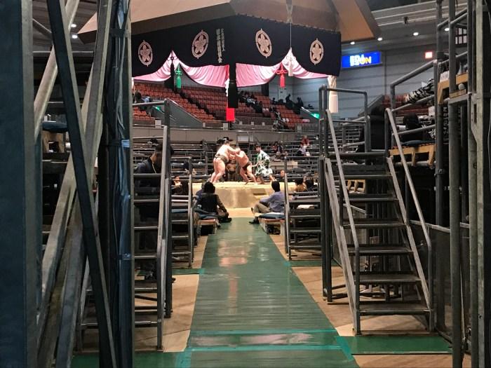 Haru basho 2019 - EDION Arena/Osaka Prefectural Gymnasium