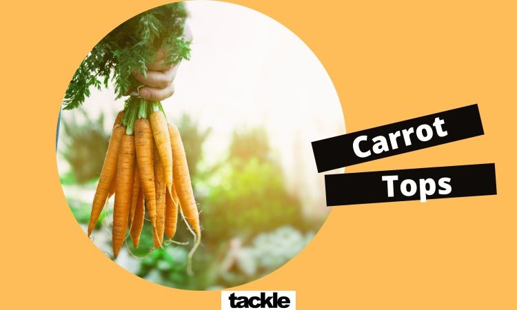 Can you use a carrot as a sex toy?