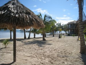 Exotic Caye Spring Special