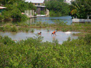Livign in San Pedro Belize
