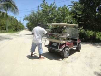 Golf Carts Ambergris Caye