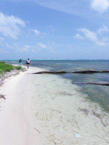 Ambergris Caye Belize Beaches