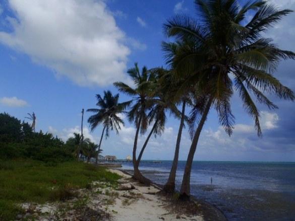 San Pedro Belize beach pictures