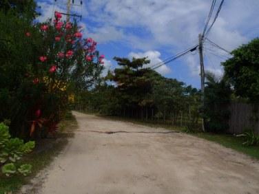 north ambergris caye roads